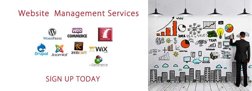 Website Management Services in Atlanta, GA
